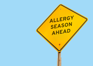 Common allergies explained
